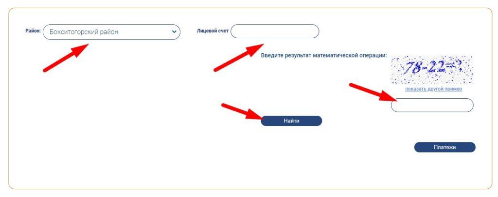 Введите данные для оплаты в личном кабинете ЕИРЦ Ленинградской области