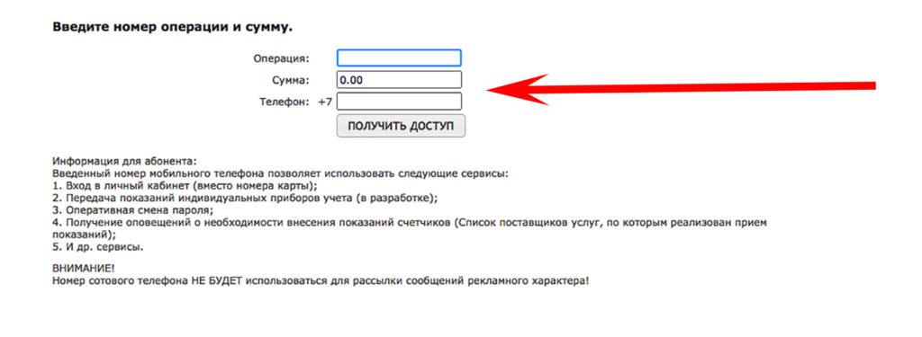 введите номер операции и сумму